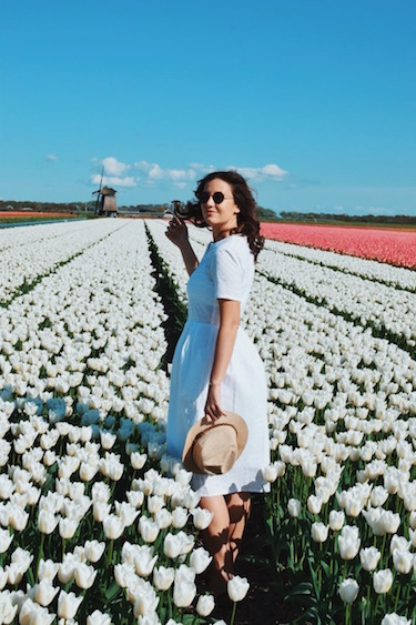 The Ultimate Tulip Season Guide for the Netherlands
