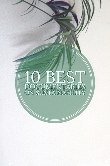 The 10 Best Documentaries on Sustainability